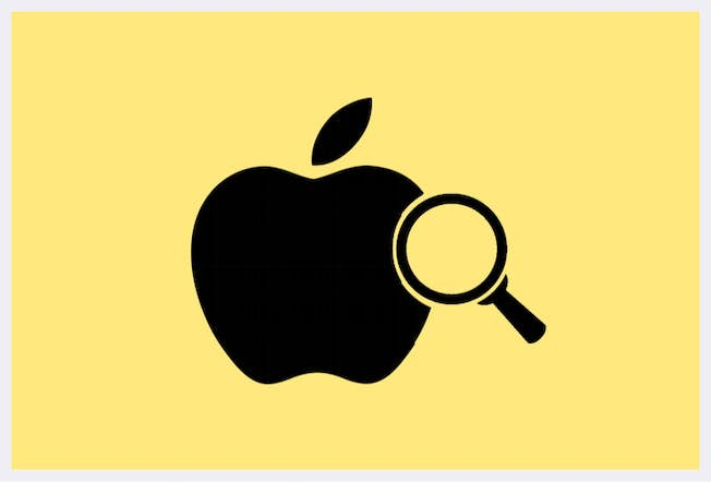 November Update: Apple Search, Slack Buyout, and a Baby Owl