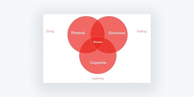 Figure 2b: Human insight sources
