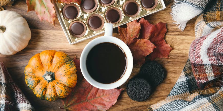 Fall into Autumn - Our Membership Update 2020