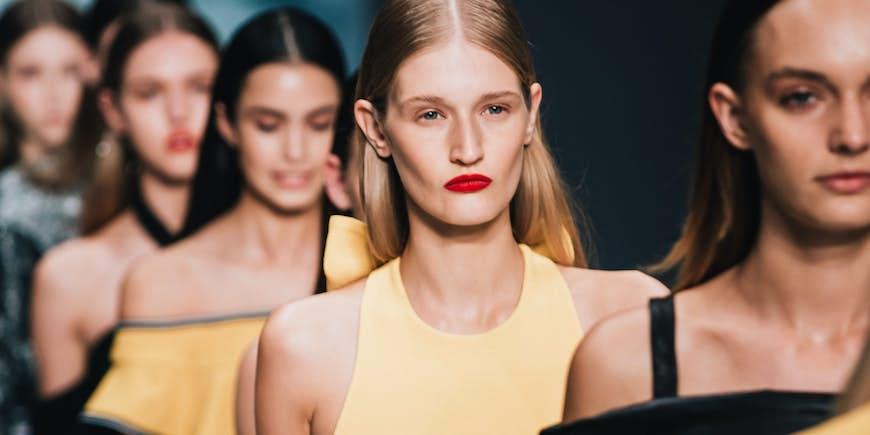 A Digital Marketing Strategic Blueprint for the Fashion Industry